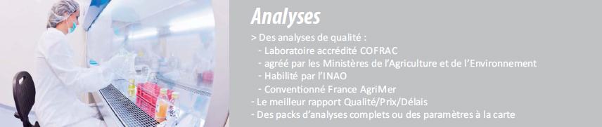 enbref_analyse