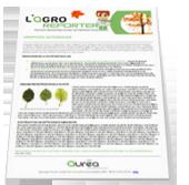 newsletter agronomique agroreporter aurea